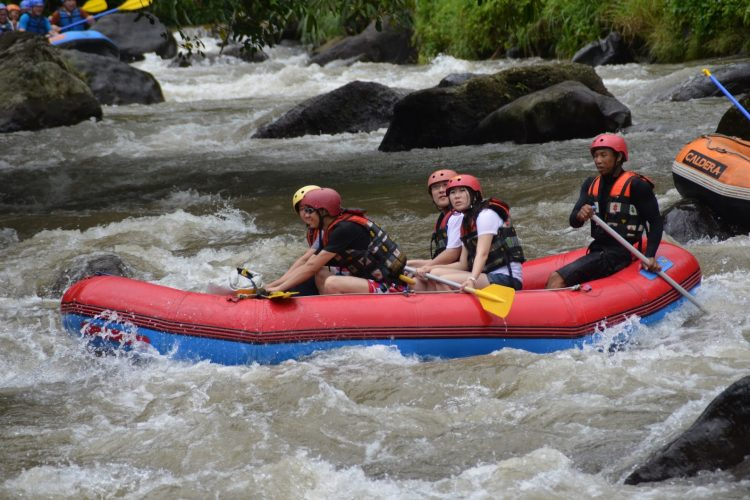 rafting di sungai ayung - Sungai Ayung Paket Tour Murah, YOEXPLORE