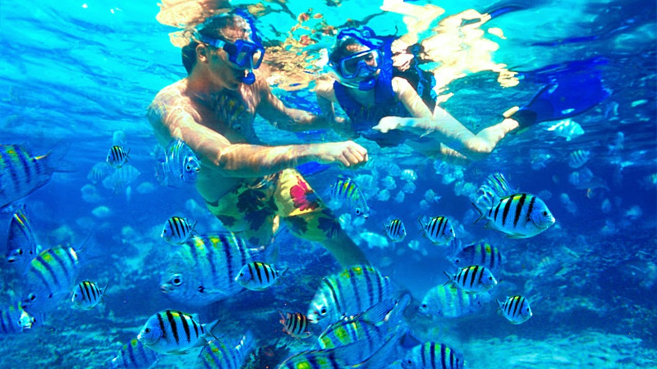Bali Snorkeling Package - YOEXPLORE.co.id