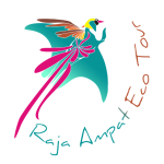 Logo Raja Ampat Eco Tour