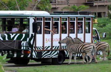 Taman Safari Bogor - Taman Safari Bogor Tour Packages, YOEXPLORE