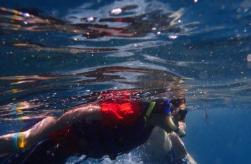 lovina dolphin snorkeling - Bali Tour Packages, YOEXPLORE