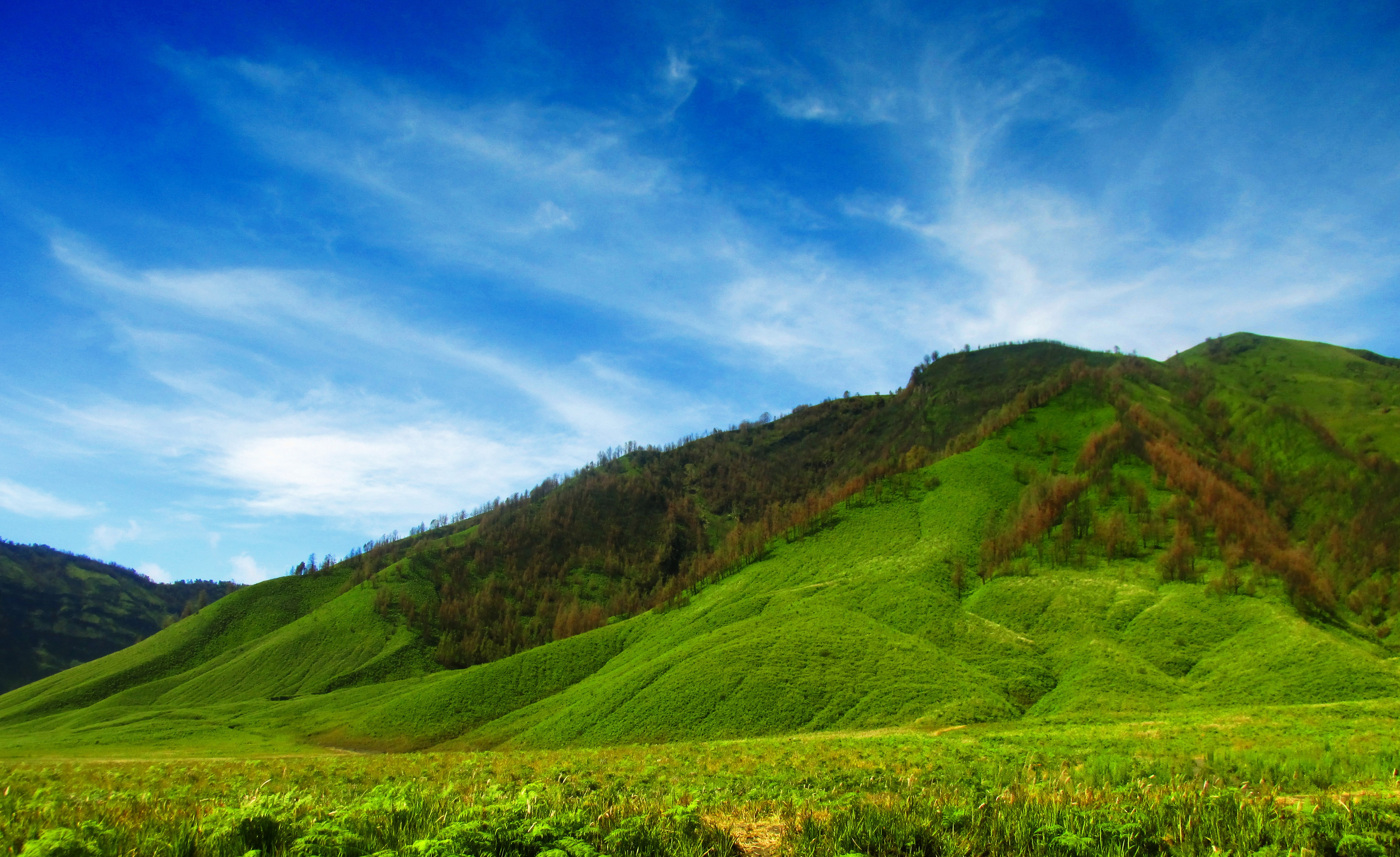 bromo tour - Madakaripura Bromo Private Tour - Explore Indonesia, YOEXPLORE