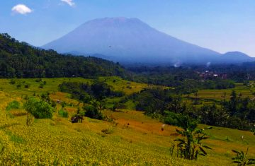 Explore Indonesia - Kastala Tenganan Rice Terrace Trekking | Bali, Indonesia