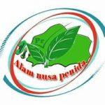 Logo Alam Nusa Penida