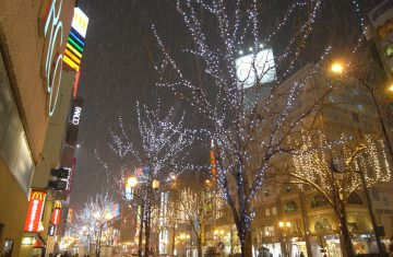 Sapporo Japan Winter Tour - Japan Tour Packages, YOEXPLORE