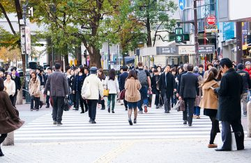 tokyo winter trip - Tokyo Tour Packages, YOEXPLORE