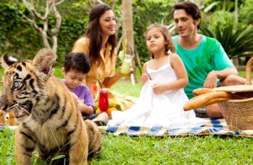 Bali Zoo - Yoexplore