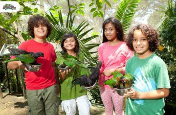 Bali Bird Park - Yoexplore