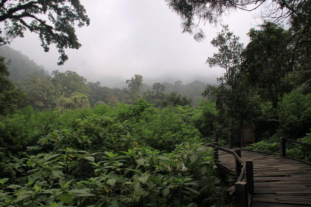 YOEXPLORE_Gede-Pangrango-Park