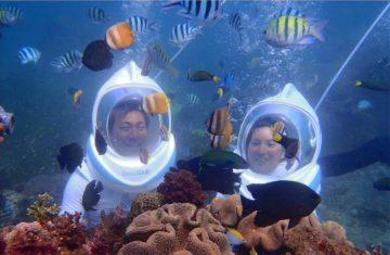 Wisata Honeymoon Bali 4H3M