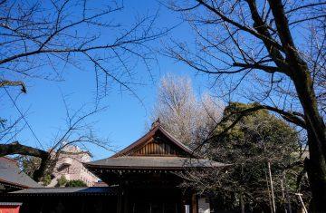 Paket Tour Jepang Tokyo 4D3N