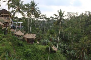 Babymoon trip to Bali
