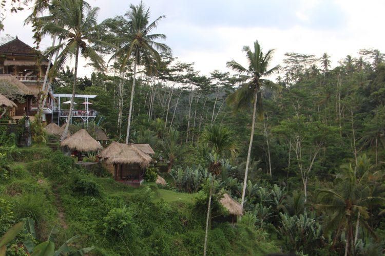 Ubud-Bali-2