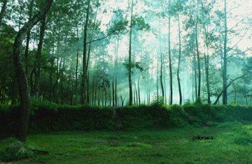 Ecotourism Kalibendo